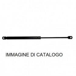 Cambio pistone portellone baule Fiat Punto mk-
