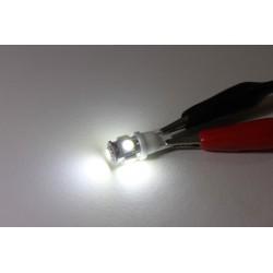 Luce lampadina posizione LED W5W a 5 LED SMD 5050 alta potenza interni posizione ecc